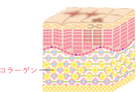 CHANGE2 | 新しいコラーゲンを生成し、肌の再生が始まります